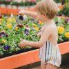 shooting_verano21_ilolilo_ranita tulipan (7)